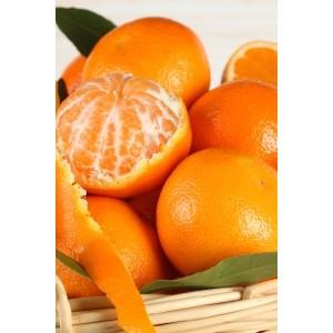Цитрусовые ароматы, которые поднимут настроение на весь день