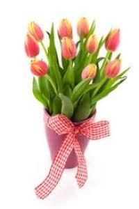 Какие духи подарить на 8 марта: лучшие парфюмы для девушек и женщин
