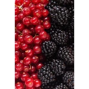 Ягодные духи: ТОП ярких ягодных запахов