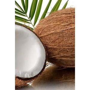 Духи с запахом кокоса: ТОП-6 ароматов