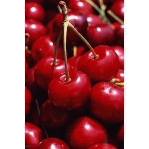 Духи с запахом вишни | Вишня в парфюмерии